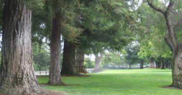 Lincoln Park Los Altos - acquired in 2016 from Santa Clara County